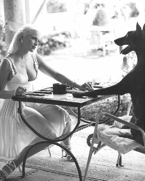 「美女と野犬」