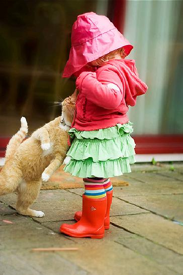 「長靴をはいた猫になりたい猫」