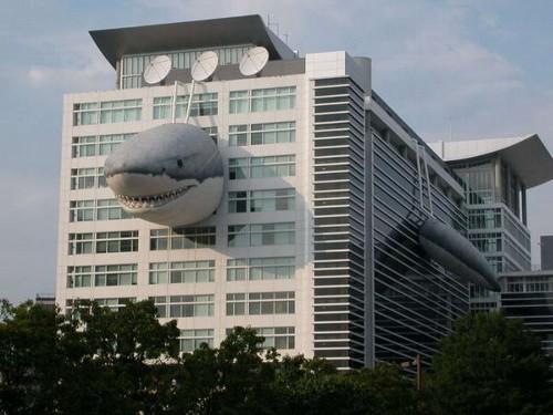 「サメの進化」